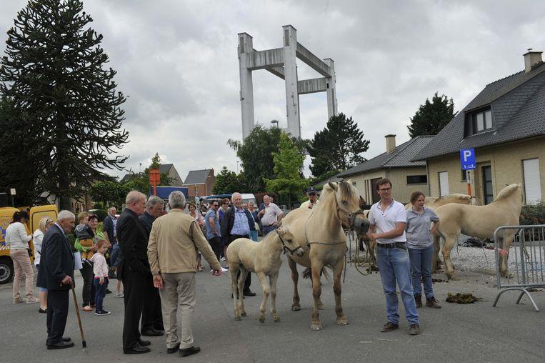 Vooral de prijskamp van het Belgisch trekpaard viel in de smaak.