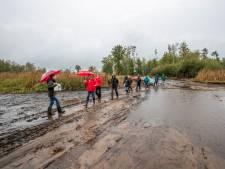 Zeldzame natuur keert terug in drooggelegd Greveschutven in Valkenswaard