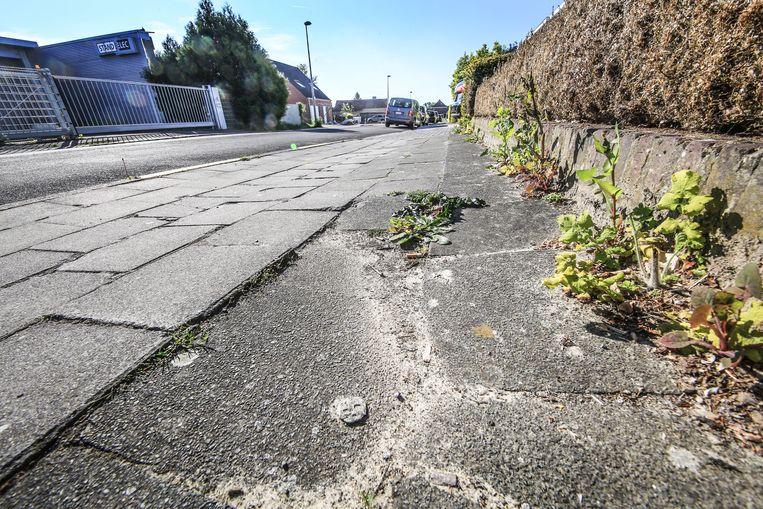 De voetpaden de Henri Dewildestraat verkeren in een slechte staat.