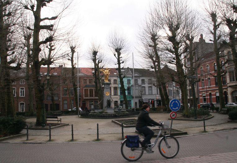 """""""Veel stadsbomen worden bedreigd door onder meer gebrek aan ruimte, schade door bouwwerken, extreme vochtigheid of droogte of verkeersschade. """""""