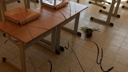 Vandalen slaan toe in basisschool De Wegwijzer: computers vernield, brandblussers en verfbussen leeggespoten