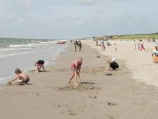 Onderzoek naar strand Westvoorne: 'Vroeger kon je hier nog in de branding zwemmen'