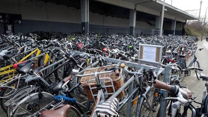 Duo steelt fiets: straf met uitstel