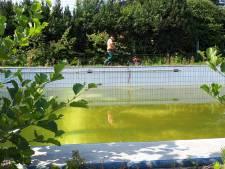 Maaimachines gaan wildernis in zwembad Arnemuiden te lijf