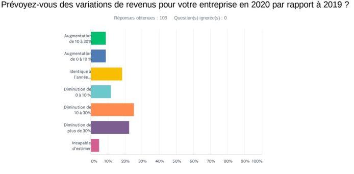 Prévision des revenus 2020 par les entrepreneurs carolos