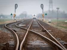 Minder treinen van Nijmegen naar Elst en Wijchen door aanrijdingen