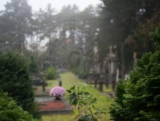 Kunstwerken op kerkhof en langs Scheldeboorden herdenken corona-overledenen