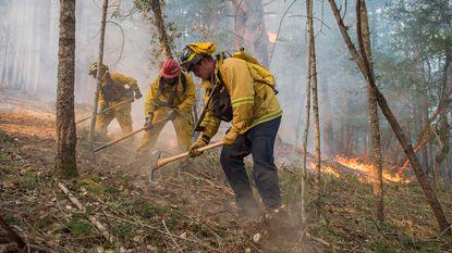 Honderden mensen vermist bij bosbranden wijngebied in Californië