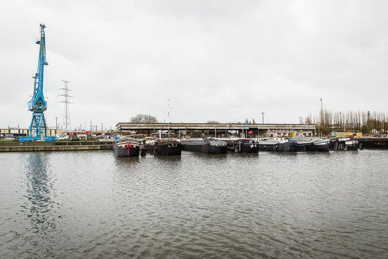 Eind april start de sanering van De Nieuwe Dokken.