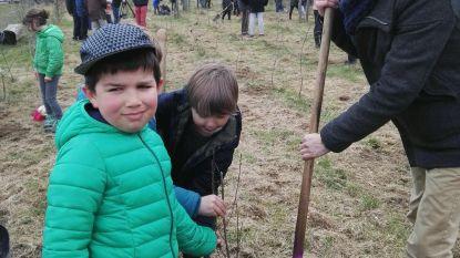250 nieuwe bomen in Abdij van Park