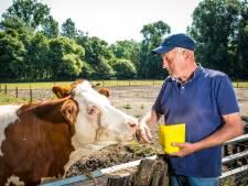 Boer Hanjo zegt kinderboerderij Kampen na 33 jaar vaarwel: 'Misschien ga ik wel naar Brazilië'