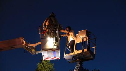 Papa laat kinderen even van uitzicht genieten vanuit hoogtewerker; brandweer moet ze bevrijden