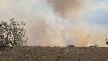 Twee hectare heide afgebrand in De Teut