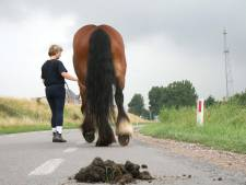 Kent u die Moerdijkse mop over het paardenpoepamendement?