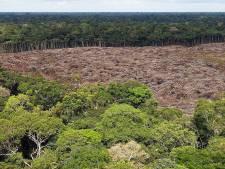 La Norvège retire 30 millions d'euros de subventions destinées au Brésil