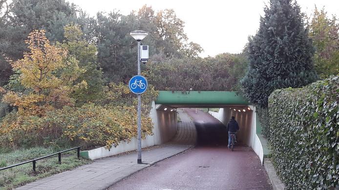 De camera's hangen nu nog bij de fietstunnels rond Drielanden. Ze worden mogelijk gebruikt bij evenementen.
