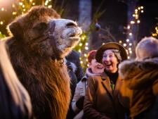 Dordrecht past levende kerststal aan na kritiek