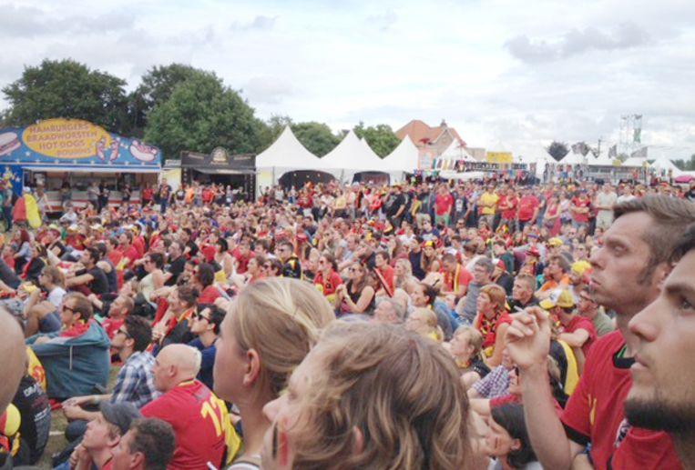 Festivalsgangers kijken naar de Rode Duivels op Rock Werchter 2014.