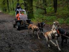 Met dwarslaesie meedoen aan sledehondwedstrijden, nieuwe kar getest in Drunen