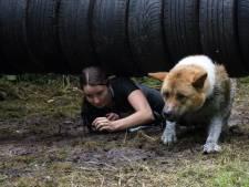 Dogsurvival in Zeewolde: klimmen, kruipen en zwemmen samen met je hond
