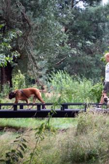 Het groen keert terug in Breda: 'Onkruid? Tegenwoordig zijn mensen kwaad als we gaan maaien'