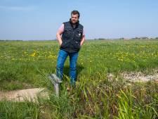 Na investering van 1,5 miljoen euro krijgt weidevogel het lastig in natuurgebied bij Hattem
