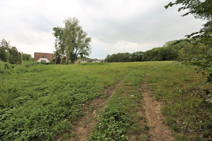 Op deze grond wil een ondernemer een feestzaal bouwen in Huizingen langs de Henri Torleylaan.