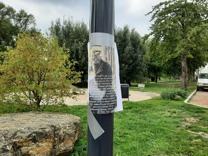 Burhan Isitan en zijn familie hebben foto's van Kitkat opgehangen in Rivierenwijk.