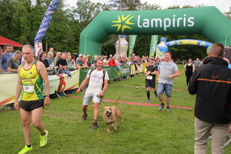 Ook huisdieren haalden de finish.