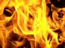 Wie stichtte twee autobranden in de Wuustwezelstraat in Breda?