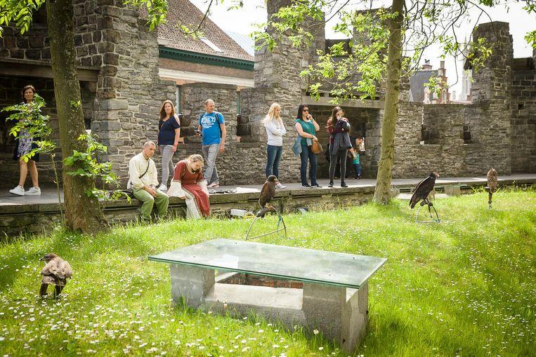 Vorig jaar stelde de stad zelf nog roofvogels tentoon op de ridderfeesten in het Gravensteen.
