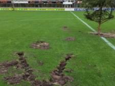 Voetbalhumor? Boom op middenstip in Oldebroek