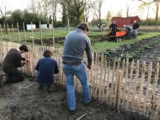 Voedselbank Boxtel krijgt 5.000 euro van Lionsclub