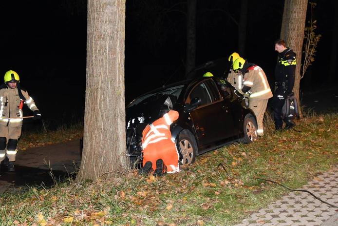 De auto reed op de Reuzenhoeksedijk tegen een boom.