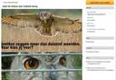 Cor Lamers zette de petitie 'Geef de oehoe zijn vrijheid terug', die door meer dan 1.700 mensen werd ondertekend