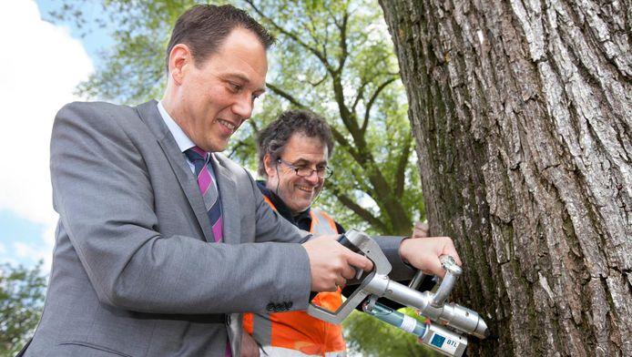 Eerder kregen iepen in Den Haag ook al een inenting.