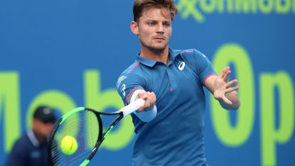 Geen geslaagde comeback voor Goffin - Flipkens start 2019 goed, Mertens en Van Uytvanck out - Del Potro zegt af voor Australian Open