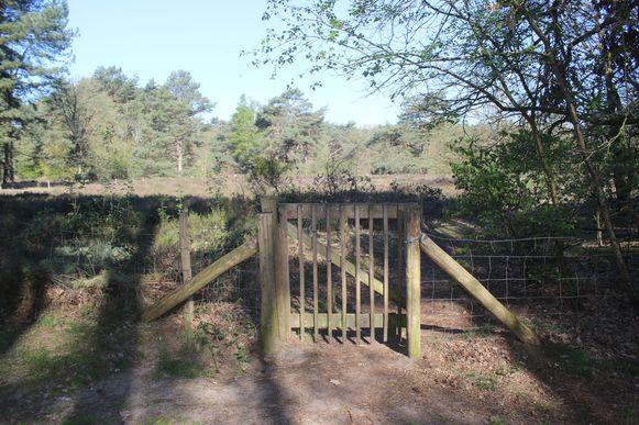 Heidegebieden afgesloten door brandgevaar. Een andere ingang van de Kruisheide werd vergrendeld met een dikke ketting.