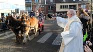 Paardenzegening en varkenskoppenverkoop tijdens Sint-Antoniusviering