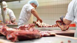 Marc Van Ranst legt uit: waarom vleesverwerkende bedrijven zulke coronaverspreiders zijn