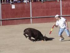 Les images insoutenables du calvaire d'un jeune taureau