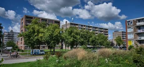 Hulpverlening aan verward persoon die in vervuild huis woont werkt niet; Schiedamse politiek trekt weer aan de bel