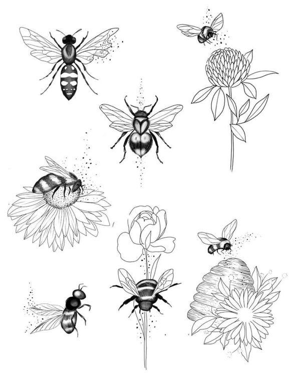 De ontwerpen van Eva Svartur.
