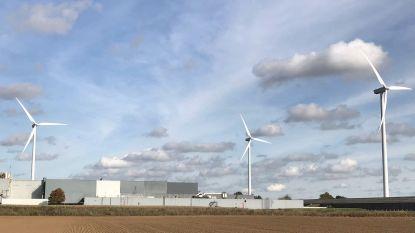 Komst nieuwe windmolens in Lanaken zorgt voor onrust bij buurtbewoners