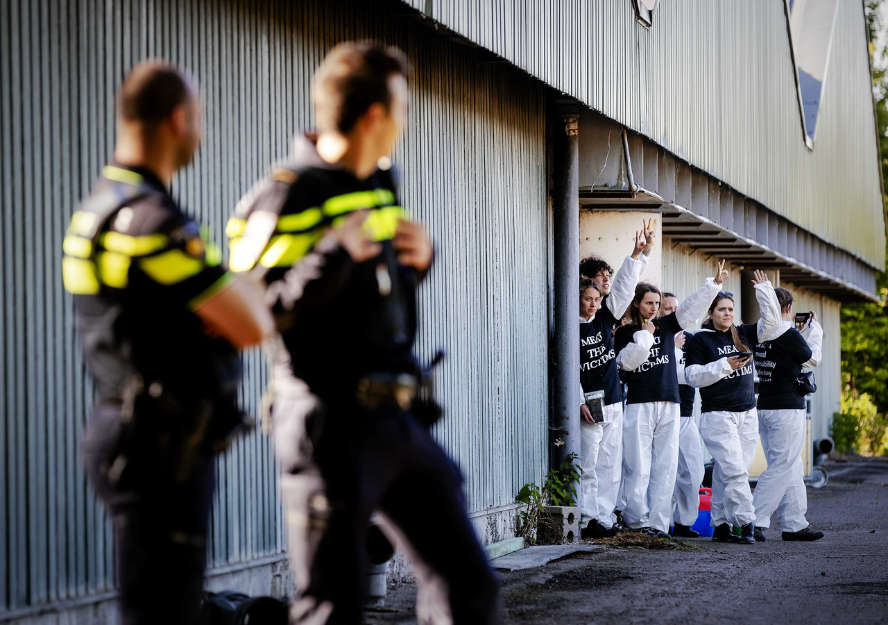 Politie-agenten kijken toe hoe actievoerders de boerderij in Boxtel bezet houden.