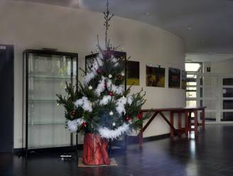 Dan toch kerststal in gemeentehuis Holsbeek