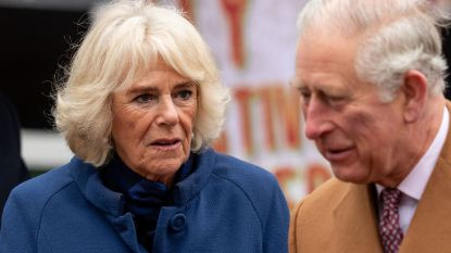 Al 50 jaar 'verboden liefde' met prins Charles: het verhaal van 'rottweiler' Camilla Parker Bowles