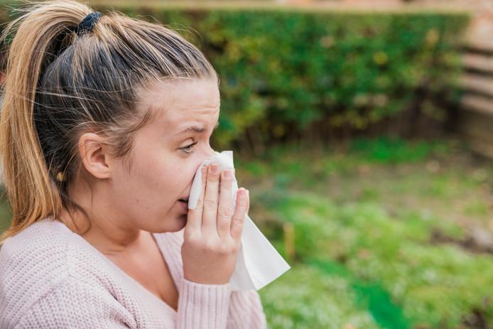 Allergie. Hooikoorts. Pollen. Niezen. Verkouden. Ziek.