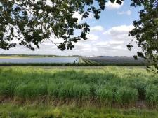 Tweede zonnepark bij Sas van Gent nog geen zekerheid, gemeenteraad trapt op de rem