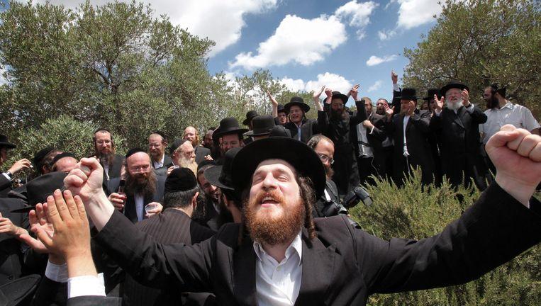 Vreugde bij orthodoxe Joden na de beslissing van een rechtbank om ouders vrij te laten van kinderen die niet naar een school in een joodse nederzetting op de West Bank wilden gaan. Foto van juni 2010. Beeld null